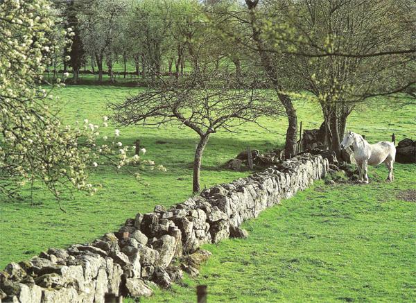 Basse normandie r gion fleurie concours villes et villages for Haute ou basse normandie